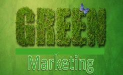Consigli per una strategia di Green Marketing che garantisca visibilità